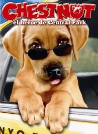 Chestnut, el héroe de Central Park